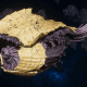 "Tyranid Battle Cruiser - ""Corrosive Tentacles Devourer"" - [Jormungandr Sub-Faction]"