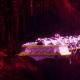 Chaos Raider - Infidel (Emperor's Children Sub-Faction)