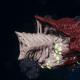 "Tyranid Destroyer - ""Bio Plasma Drone"" - [Kraken Sub-Faction]"