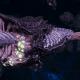 "Tyranid Destroyer - ""Bio Plasma Drone"" - [Hydra Sub-Faction]"