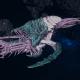 "Tyranid Destroyer - ""Corrosive Vanguard"" - [Tiamet Sub-Faction]"