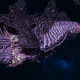 """Tyranid Destroyer - """"Caustic Drone"""" - [Hydra Sub-Faction]"""