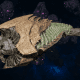 "Tyranid Destroyer - ""Strangler Drone"" - [Gorgon Sub-Faction]"