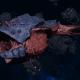 "Tyranid Frigate - ""Bio Projectile Kraken"" - [Behemoth Sub-Faction]"