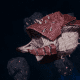 "Tyranid Frigate - ""Bio Projectile Kraken"" - [Kraken Sub-Faction]"