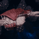 """Tyranid Frigate - """"Corrosive Kraken"""" - [Kraken Sub-Faction]"""