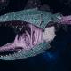 "Tyranid Frigate - ""Clutch Kraken"" - [Tiamet Sub-Faction]"
