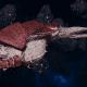 """Tyranid Frigate - """"Strangler Kraken"""" - [Kraken Sub-Faction]"""