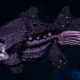 "Tyranid Cruiser - ""Bio Acid Razorfiend"" - [Hydra Sub-Faction]"