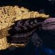 "Tyranid Cruiser - ""Bio Acid Projectile Razorfiend"" - [Jormungandr Sub-Faction]"