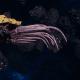 "Tyranid Cruiser - ""Razorfiend"" - [Jormungandr Sub-Faction]"