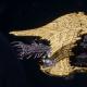 "Tyranid Cruiser - ""Bio Corrosive Razorfiend"" - [Jormungandr Sub-Faction]"
