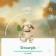 pokemon-go-smeargle-guide