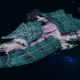 """Tyranid Battleship - """"Bio Acid Hiveship"""" - [Tiamet Sub-Faction]"""