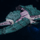 "Tyranid Battleship - ""Hiveship"" - [Tiamet Sub-Faction]"