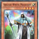 Skilled White Magician