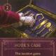 Hook's Case item card