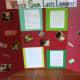 Gum Science Fair Experiment board