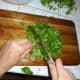 Finely chop cilantro.