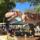 Another view of the T. rex model