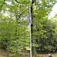 The 'Mi Amigo' flagpole.