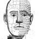 physiognomy-in-agnes-grey