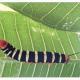 Giant Sphinx Caterpillar