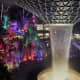 Team Lab created a luminous forest in the Changi Airport in Singapore.