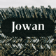 The name Jowan is the equivalent of the name John.