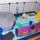Hoggle's Cube & Coroplast Cage by madflowr