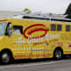 Humorous names can be very effective for food trucks, especially when paired with a funny tag line.