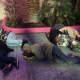 Homeless people in Las Vegas