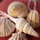 Turn your seashells into glitz and glam by wrapping and gluing strand of faux gemstones.
