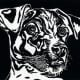 """Linocut titled """"J.R."""" by Peggy Woods"""