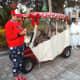 christmas-golf-cart-decorations