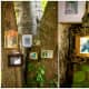 Photographs hung on trees