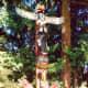 Beautiful totem poles in this park