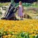 My niece standing in the VanDusen Botanical Garden
