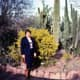 Yours truly in the Desert Botanical Garden