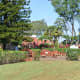 Beautiful grounds at the Dole Plantation