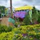 Flowers - part of Epcot's International Flower and Garden Festival