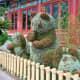 Pandas - part of Epcot's International Flower and Garden Festival