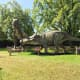 A Tyrannosaurus rex and a Triceratops