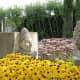 Canio (from Pagliacci) and Turandot in the Italian Garden