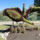 A crane family