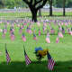 Flags on July 4th at the Houston National Cemetery
