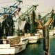 Shrimp Boats in Galveston