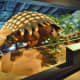 Armored Dinosaur Ankylosaurus magniventris – Cretaceous – 145 million years ago