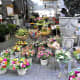 Flowers in Bloemenmarkt.