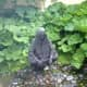 discovering-monet-and-manet-at-new-jerseys-grounds-for-sculpture